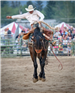 2018Rodeo05